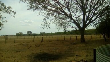 Finca Productiva En Guarico