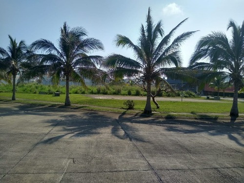 Terreno Residencial En Riviera Veracruzana, Real Mandinga
