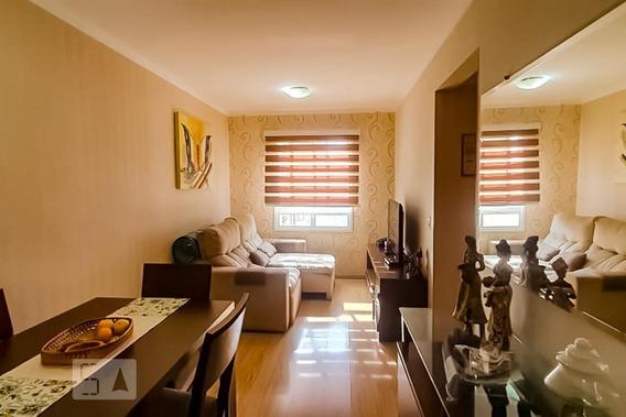 Apartamento Para Aluguel - Jardim Maia, 2 Quartos, 49 - 893094352