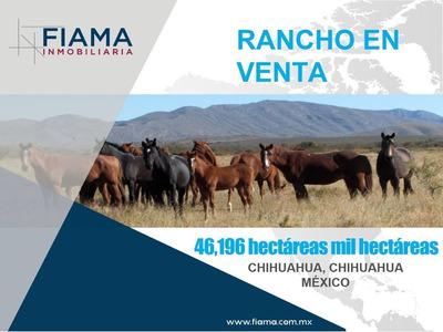 Rancho Ganadero En Venta En Chihuahua, México