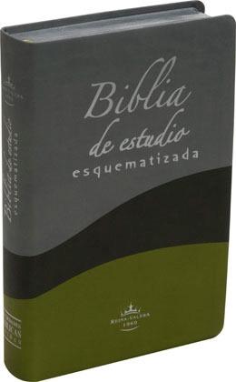 Biblia De Estudio Esquematizada De Lujo Reina Valera 1960