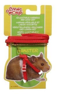 Conjunto Arnés Y Correa Para Hamsters
