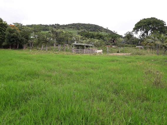 Finca En Manabí - San Vicente