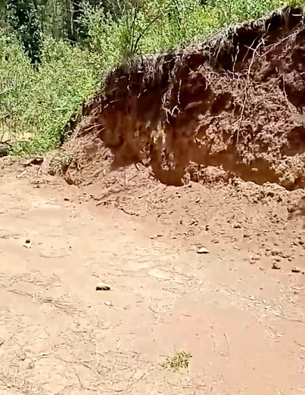 Vende Terreno Especial P/ Huerta De Aguacate Jalisco 1200 Ha