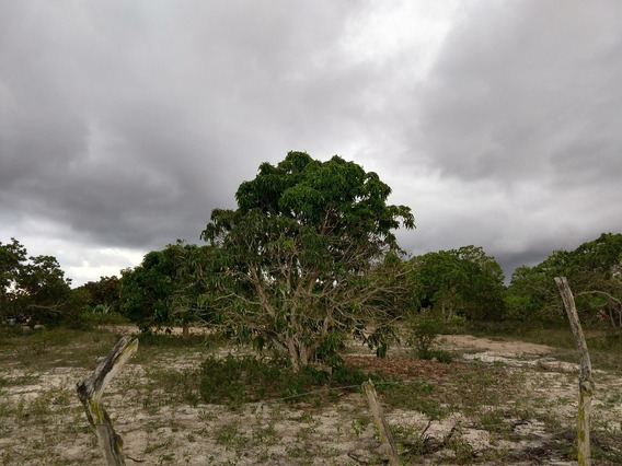 Terreno Em Garanhuns Pernambuco Tamanho 41 Por 69