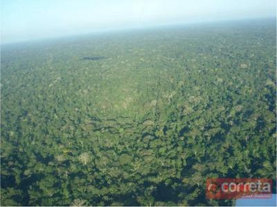Área De 64.500 Hectares, Sequestro De Carbono Rio Branco/ac