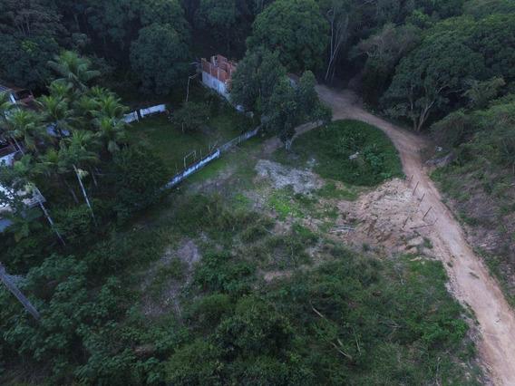 Terreno Em Piratininga, Niterói/rj De 0m² À Venda Por R$ 100.000,00 - Te287147