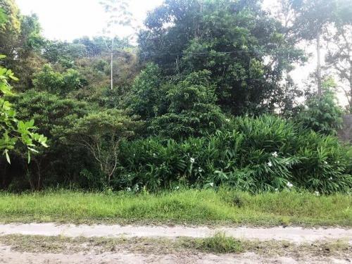 Terreno De Chácara No Litoral Com 6624 M², Em Itanhaém