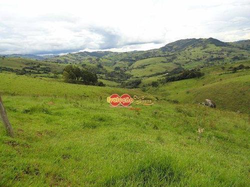 Imagem 1 de 14 de Fazenda - Sul De Minas - Munhoz-mg - Fa0041