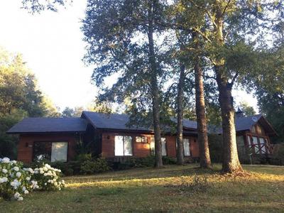 Encantadora Casa Sureña En Bosque Nativo - Pucon