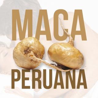 Maca Peruana 500g E Trib 500gr