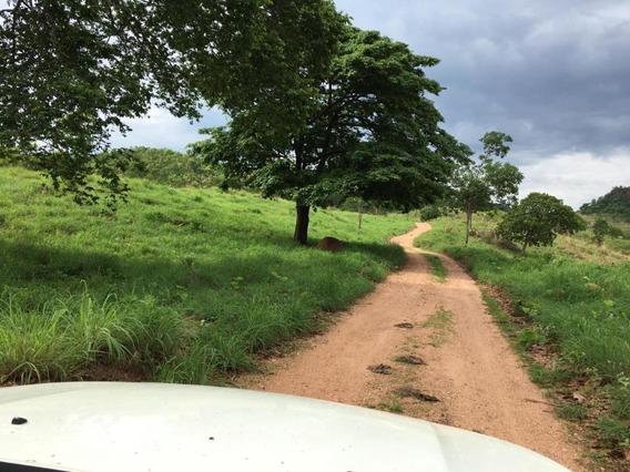 Linda Fazenda, 148 Alqueires, Em Goiás. - Fa0001