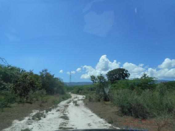 Terreno Con Vocacion Industrial - Agricola