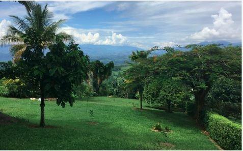 Venta Lote La Cabaña, Manizales. Cod 3803085