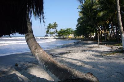 Conjunto Terrenos E Casas Direitamente Na Praia Dos Milagres
