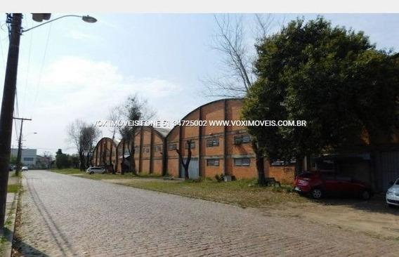 Pavilhao - Sao Joao - Ref: 49572 - L-49572