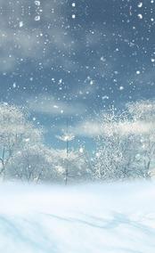 Fundo Infinito Temático Em Tecido Dry-fit Tema Natal 18