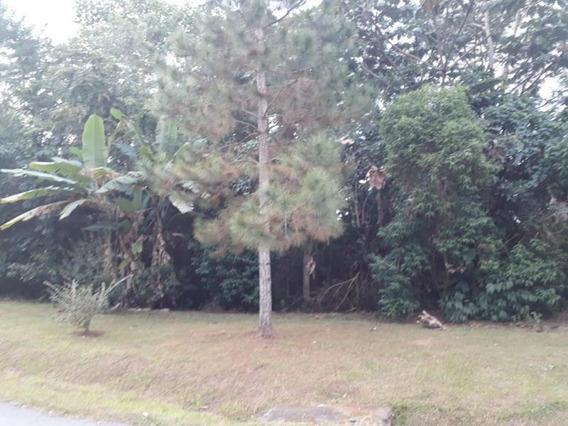 Terreno Para Venda Em Mogi Das Cruzes, Parque Residencial Itapeti - 2304_2-968169