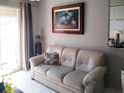 Apartamento À Venda - São Cristóvão, 2 Quartos,  50 - S893129542