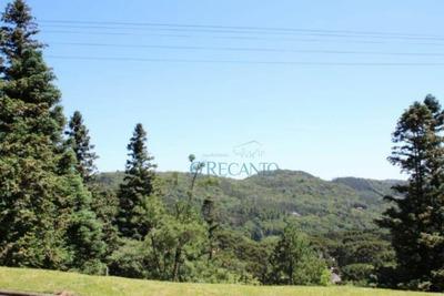 Terreno À Venda, 800 M² Por R$ 598.000 - Aspen Mountain - Gramado/rs - Te0513
