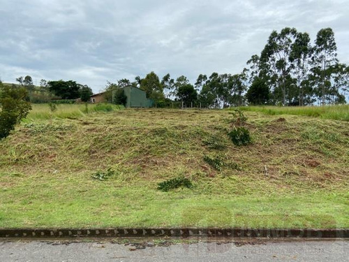 Terreno Para Venda Em Taubaté, Morada Dos Nobres - Te0057_1-1861955