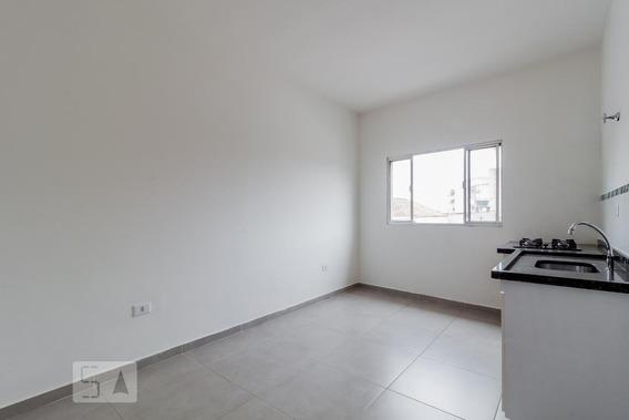Apartamento Para Aluguel - Vila Prudente, 1 Quarto, 30 - 893022425