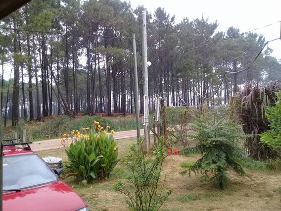 Oportunidad: Terreno Frente Al Bosque De Pinos. 32000 Dolar