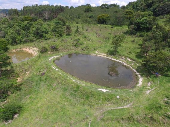 Sítio Para Comprar No Centro Em Serra Negra/sp - 4654