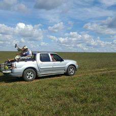 Transporte Camioneta Funeral De Tu Mascota