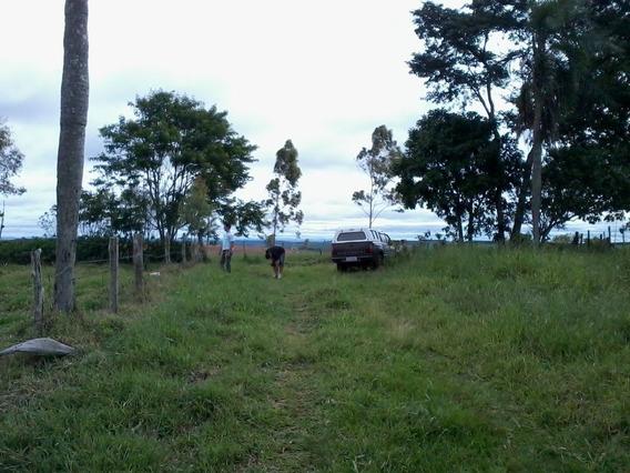 Sitio Itapetininga 4 Alqueires Bairro Gramadao