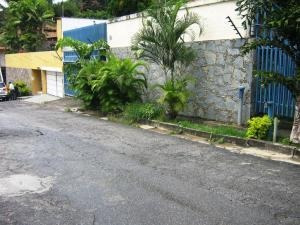 Celeste C 20-17263 Alquila Casa En El Marques