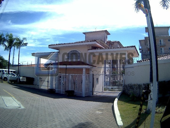Locação Apartamento Sao Bernardo Do Campo Planalto Ref: 3509 - 1033-2-35099