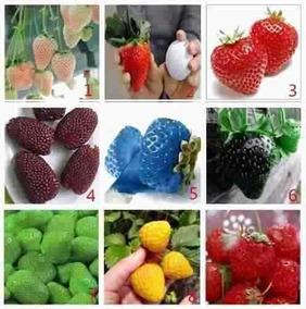 180 Sementes De Morangos Coloridos 9 Cores - Vasos E Jardins