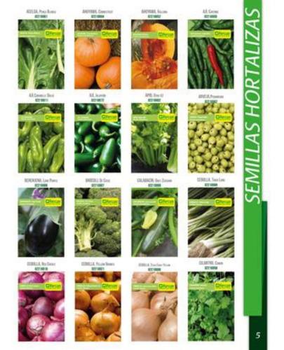 Imagen 1 de 10 de Kit 1000 Semillas Organicas 20 Variedades