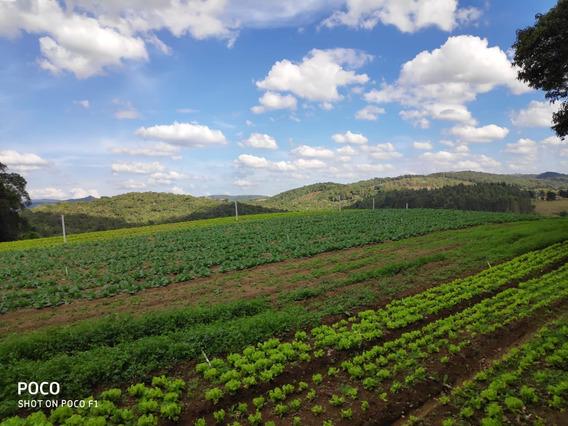 L. Terreno Com Área Verde E Linda Vista Por 22 Mil