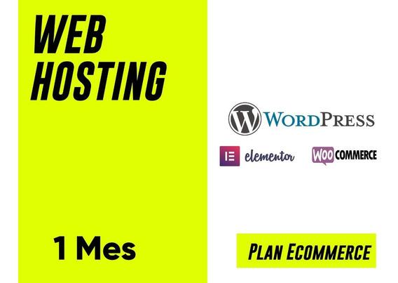 Web Hosting - Plan Ecommerce - Wordpress - Ssl - $275xmes