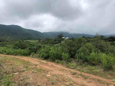 Terreno De 6 Hectáreas En San Antonio Guadalupe Zumpahuacán