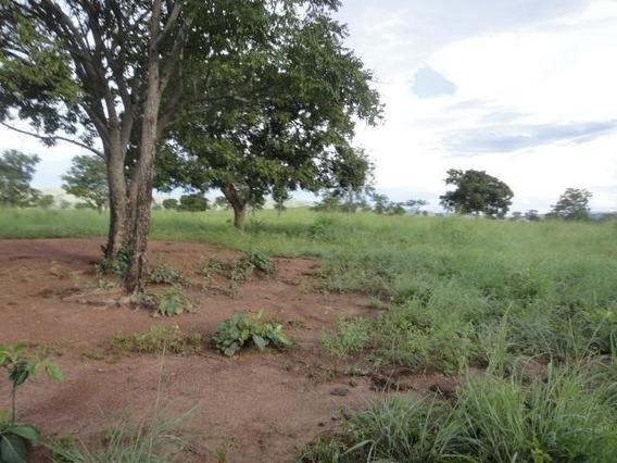 Fazenda Em Zona Rural, Alvorada Do Norte/go De 0m² À Venda Por R$ 65.000.000,00 - Fa230066