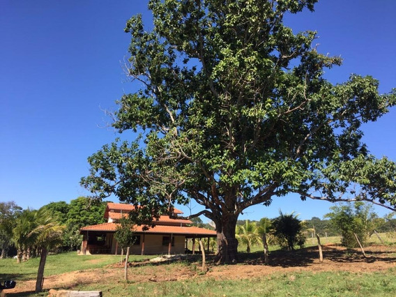 Chácara Rural À Venda Em Leopoldo Bulhões. - Ch0020