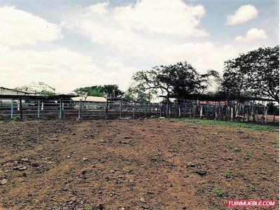 Haciendas - Fincas En Venta