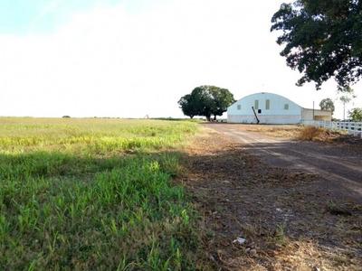 Fazenda A Venda Em Sta. Maria Das Barreiras-pa-dupla Aptidão - 757