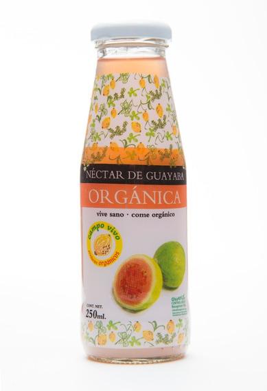 Néctar De Guayaba Organico Campo Vivo 250ml