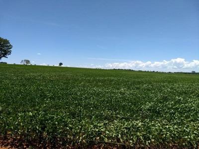 Fazenda Para Venda Em Caldas Novas - 072
