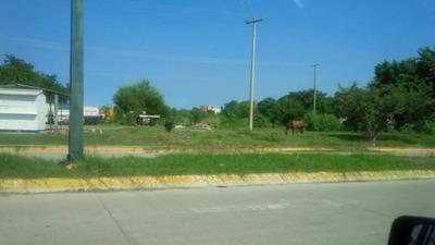 Terreno En Renta Blvd. Allende A Un Lado De La Ganadera De Altamira, Tamaulipas