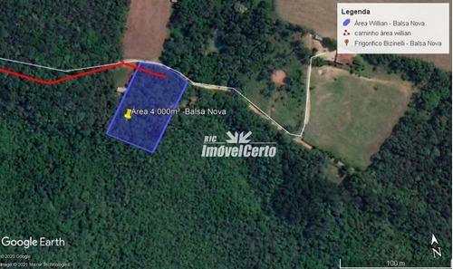 Imagem 1 de 14 de Chácara À Venda, 4000 M² Por R$ 75.000,00 - Rodeio Da Chapada - Balsa Nova/pr - Ch0011