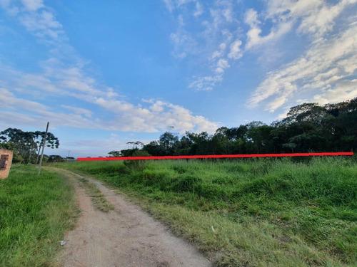 Imagem 1 de 6 de Área Para Venda Em São José Dos Pinhais, Agaraú - 93_2-1179991