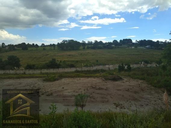 Terreno Com 3.500 M² E Lago Em Condomínio No Centro De Quatro Barras. - Te00028 - 34012852