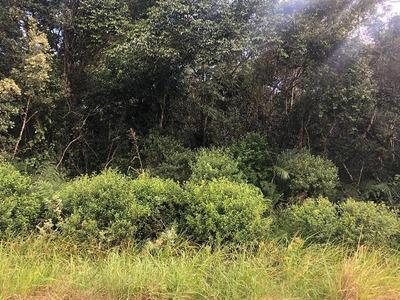 Ótimo Terreno De Chácara - Em Itanhaém-sp