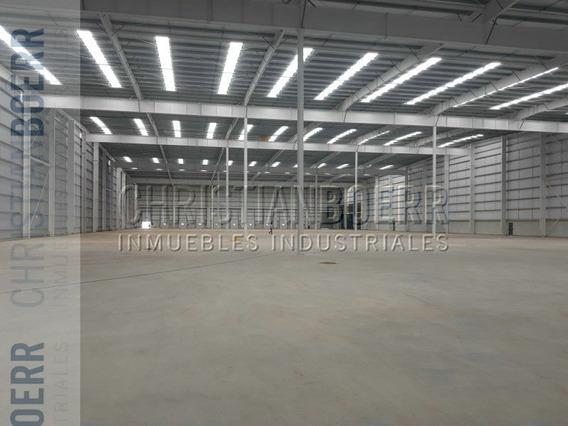 Nave Industrial En Alquiler 20.000 M2 Cub - Parque Ind Ruta