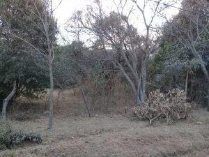 Lote Esquina En Sierra Morena, Villa Ciudad Parque